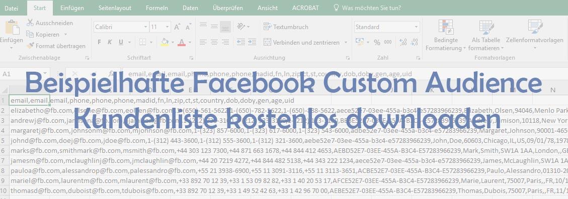Download Beispiel: Kundenliste für Custom Audience